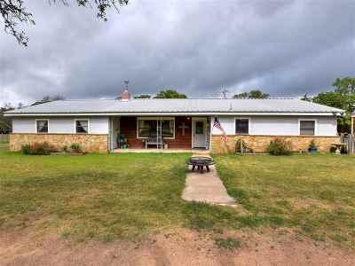 Burnet Single Family Home For Sale: 208 Steffey