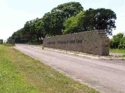 Bertram Residential Lots & Land For Sale: 419 Saddle Ridge