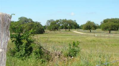 Burnet Farm & Ranch For Sale: 475 Windmill Road