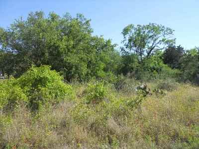Burnet TX Residential Lots & Land For Sale: $6,400