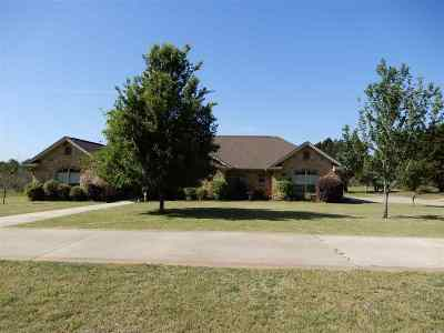 Marble Falls Single Family Home For Sale: 96 Park Trail