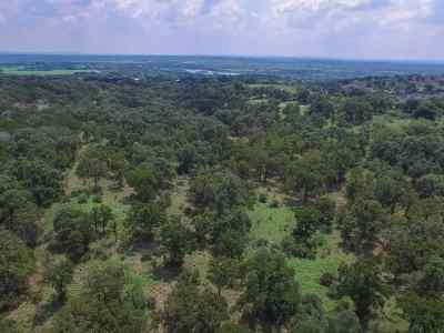 Burnet County Farm & Ranch For Sale: Fm 1431 East