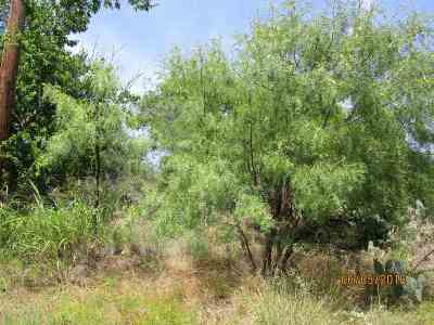 Granite Shoals Residential Lots & Land For Sale: 547-548 E Hilldale