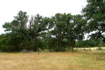 Lampasas Farm & Ranch For Sale: Cr 1255
