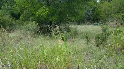 Burnet County Residential Lots & Land For Sale: Lot 348-349 Valley East Lane