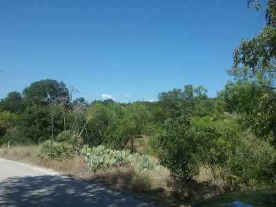 Buchanan Dam TX Residential Lots & Land Pending-Taking Backups: $24,500