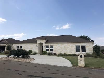 Burnet County Single Family Home For Sale: 339 Granite
