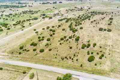 Farm & Ranch For Sale: 11900 Fm 963