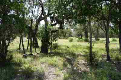 Spicewood Residential Lots & Land For Sale: 509 Vista View Trail