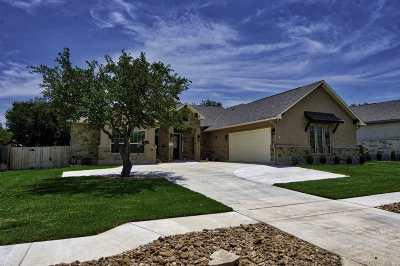 Burnet Single Family Home For Sale: 236 Sunday Dr
