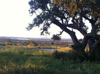 Horseshoe Bay Residential Lots & Land For Sale: 19-A Nightshade