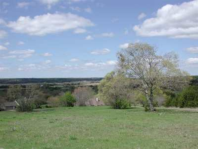 Burnet Residential Lots & Land For Sale: Andy's Point
