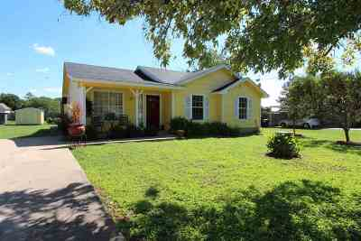 Burnet County Single Family Home For Sale: 555 Live Oak