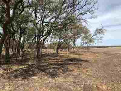 Burnet County Farm & Ranch For Sale: Tract 25a County Road 200a