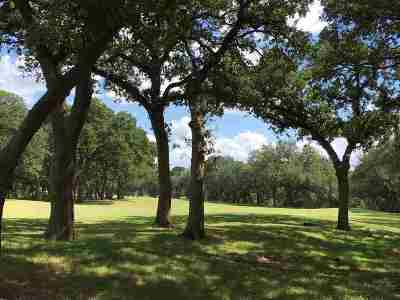 Horseshoe Bay W Residential Lots & Land For Sale: W13044 Cats Eye