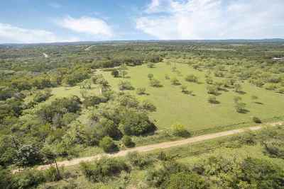 Burnet County Farm & Ranch For Sale: 375 W Wandering