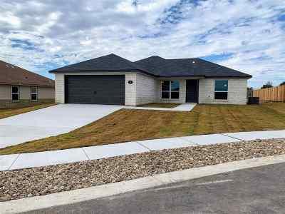 Burnet Single Family Home For Sale: 116 Rylee