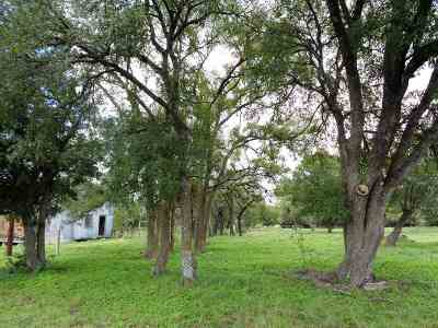 Burnet TX Farm & Ranch For Sale: $245,000