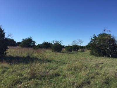 Lampasas County Farm & Ranch For Sale: Cr 2719