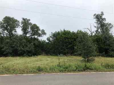 Burnet County Farm & Ranch For Sale: 1248 Cr 333