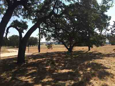 Burnet County Residential Lots & Land For Sale: 739 Summit Springs