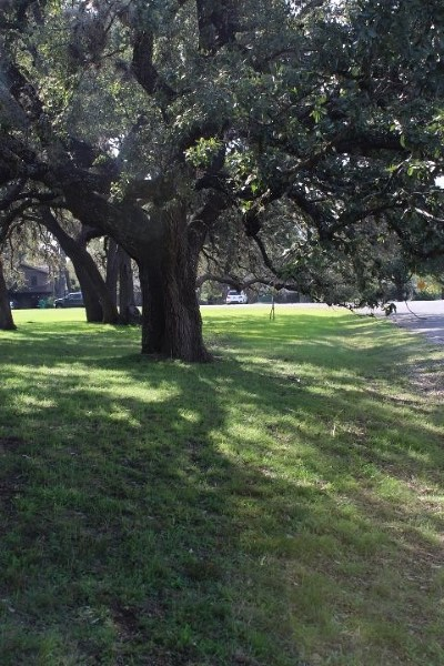 Horseshoe Bay TX Residential Lots & Land For Sale: $80,000