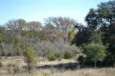 Burnet Farm & Ranch For Sale: 4772 Cr 340