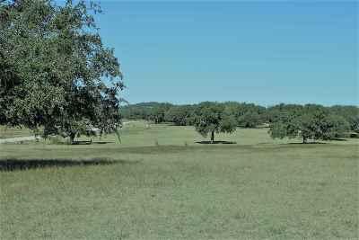 Johnson City Residential Lots & Land For Sale: Lot 98 Summit Ridge