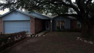 Burnet Single Family Home For Sale: 307 Fox Crossing