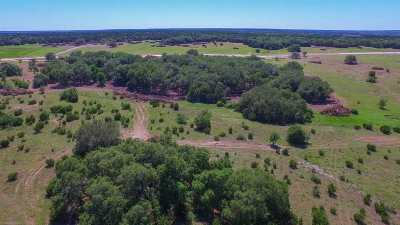 Burnet Farm & Ranch For Sale: Tract 47 Boushka