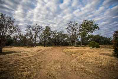 Marble Falls Residential Lots & Land For Sale: 3809 Mormon Mill Rd