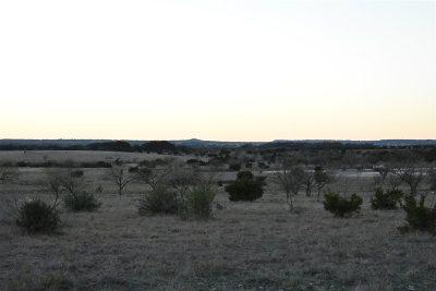 Lampasas Farm & Ranch For Sale: W Fm 580