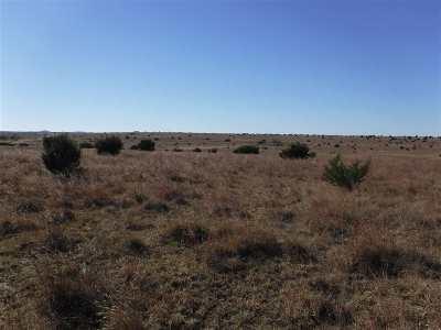 Lampasas Farm & Ranch For Sale: Cr 2337