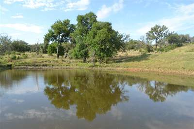 marble falls Farm & Ranch For Sale: 8411 E Fm 1431