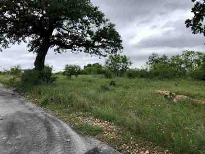 Spicewood Residential Lots & Land For Sale: Lot 2b Schoolhouse Lane