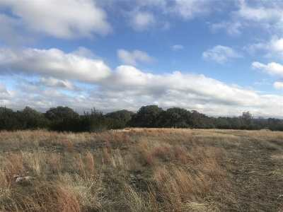 Bell County, Burnet County, Coryell County, Lampasas County, Mills County, Williamson County, San Saba County, Llano County Residential Lots & Land For Sale: 345 Sable Pass