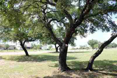 Burnet Residential Lots & Land For Sale: Lot 9 Travis Trail