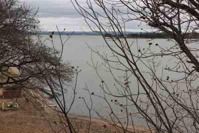 Buchanan Dam Single Family Home For Sale: 136 Oleander