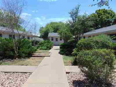 Marble Falls Rental For Rent: 602 Third Street, #b