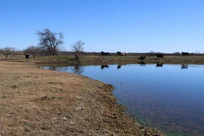 Burnet County Farm & Ranch For Sale: E Fm 243