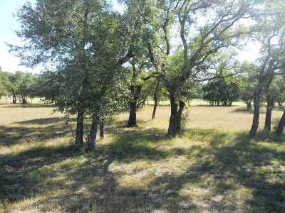 Burnet Residential Lots & Land Pending-Taking Backups: Lot 4 Rachel Loop