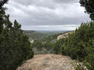 Bertram Residential Lots & Land For Sale: 155 Sierra