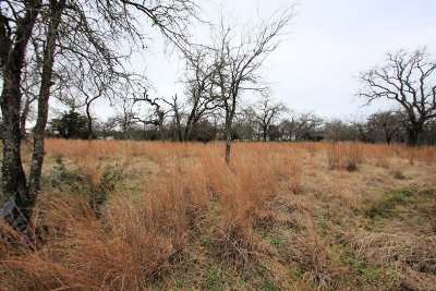 Granite Shoals Residential Lots & Land For Sale: Lot 87a Hill Burn