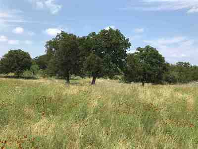 Spicewood Residential Lots & Land For Sale: Lot 5 W Trail Dr