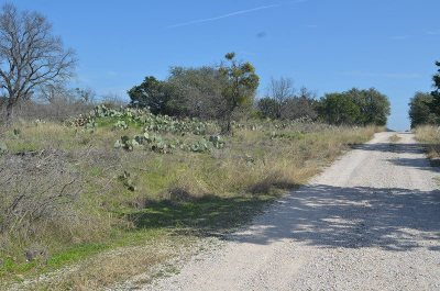 Burnet Residential Lots & Land For Sale: Lots 106, 107 Fm 2341 & Front St.