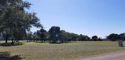 Burnet Residential Lots & Land For Sale: 327 Oak Vista