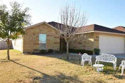 Burnet Single Family Home For Sale: 100 N Tanner
