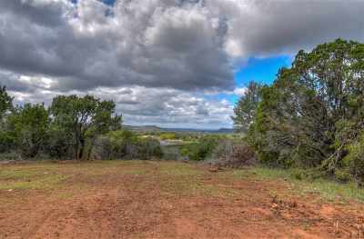 Burnet Farm & Ranch For Sale: Fm 2341 Tracts 4-5