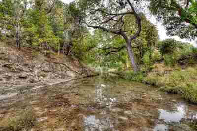 Burnet County Farm & Ranch For Sale: 3201 County Road 335