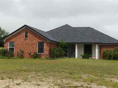 Kempner Single Family Home For Sale: 300 County Road 3351